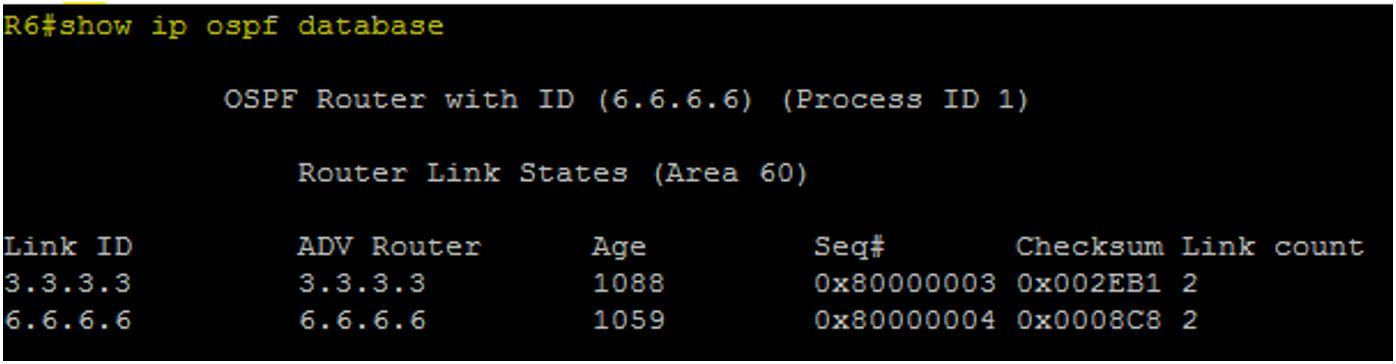 R6 OSPF Database