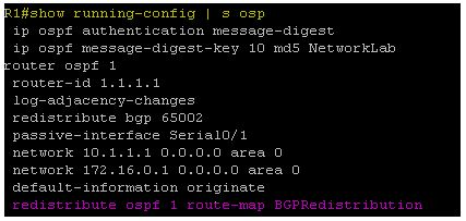 Show running-config | s ospf