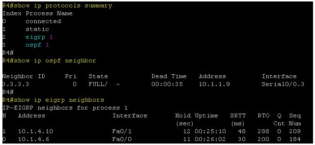 Show ip protocol summary