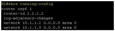 Show running-config