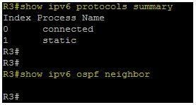 Show ipv6 protocols summary