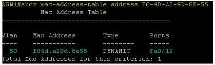 Show mac-address-table